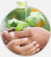 Qualidade ambiental em Plásticos Reciclados